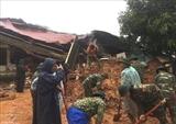 Найдены тела 14 жертв оползня в Куангчи