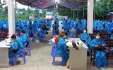 В течение 47 дней подряд во Вьетнаме не было зарегистрировано ни одного случая COVID-19 в обществе