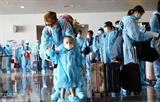 Более 340 вьетнамских граждан привезены из Норвегии