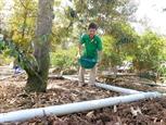 Дельта Меконга принимает превентивные меры против проникновения солей