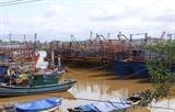Центральные населенные пункты готовятся к урагану Молаве
