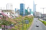 Хошимин ускоряет подпроекты по развитию умного города