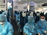 Более 350 вьетнамских граждан доставлены домой из Австралии и Новой Зеландии