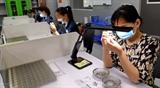 Đà Nẵng đẩy mạnh thu hút FDI công nghệ cao