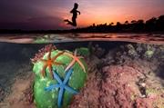 探索海洋奥妙的摄影师