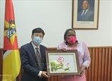 Мозамбик приветствует председательство Вьетнама в АСЕАН и непостоянное членство СБ ООН