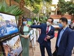 Вьетнамская культура становится популярной в Египте