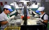 Прогноз ПИИ во вспомогательные отрасли
