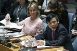 HĐBA thảo luận về tình hình Israel – Palestine - Việt Nam kêu gọi các bên tìm giải pháp hòa bình
