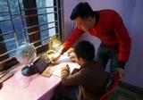 Bộ Giáo dục và Đào tạo đề nghị cho học sinh sinh viên tiếp tục nghỉ học đến hết tháng 2