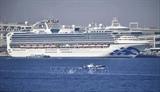 Япония подтвердила 355 случаев заражения коронавирусом на лайнере Diamond Princess