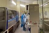 Hải Phòng chính thức vận hành máy xét nghiệm xác định virus gây bệnh COVID-19