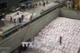 Вьетнам всегда уделяет внимание продовольственной безопасности наряду с экспортом риса