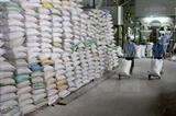 베트남 쌀·러시아 메밀···수출 봉쇄 초비상