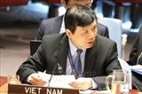 Вьетнам призвал заинтересованные стороны соблюдать прекращение огня в Ливии