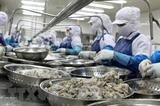 В первом квартале экспорт продуктов сельского лесного и рыбного хозяйств Вьетнама вырос почти на 49%