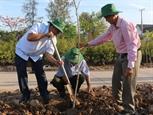 Bạc Liêu trồng rừng bảo vệ rừng và bảo vệ cây trồng là yêu cầu cấp bách quan trọng