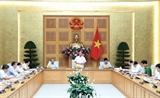 Thủ tướng chủ trì họp tháo gỡ khó khăn cho doanh nghiệp dầu khí và hàng không