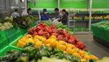 США становятся крупнейшим поставщиком фруктов и овощей во Вьетнам