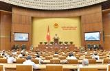 국회 국회조직법 일부조항 수정보충법안 논의