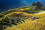 Promueve Vietnam Premio fotográfico Heritage - Viaje patrimonial 2020