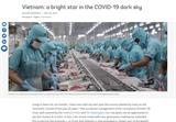 Banque mondiale: le Vietnam - une étoile brillante dans le ciel sombre du COVID-19