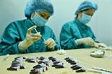Việt Nam nước rút trong nghiên cứu sản xuất vắc xin phòng COVID-19