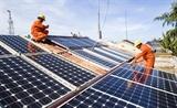 태양광 지붕 패널 설치 확대하는 메콩델타