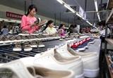 베트남-유럽연합 FTA 베트남 경제 견인