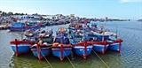 EVFTA为越南水产业创造巨大机会