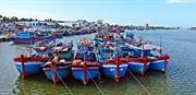 ベトナムとEU=欧州連合との自由貿易協定(EVFTA)、水産業への期待。