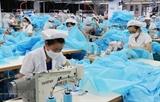 Город Кантхо принимает меры для ускорения восстановления экономики