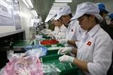 Вьетнам потерял 24 миллиона рабочих мест за первые 2 квартала