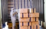 유럽으로 수출되는 베트남 농산품