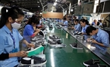코로나에 베트남 신발 수출도 타격