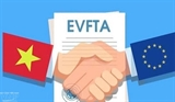 EVFTA 협정의 관세 혜택