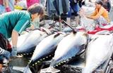 Экспорт тунца в ЕС растет