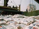 베트남의 쌀 브랜드 조성