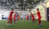 베트남축구연맹 AFC 신세대축구발전 프로그램의 공식회원