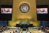 Việt Nam luôn coi trọng mong muốn tăng cường quan hệ hợp tác toàn diện với Liên hợp quốc