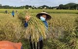 Вьетнам поставил 17 целей устойчивого развития до 2030 года