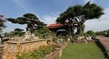 Sức sống làng nghề trồng cây cảnh Hồng Vân