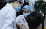 МИД Вьетнама: Тестирование вакцины COVID-19 строго соответствует рекомендациям ВОЗ