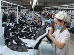 베트남의 이스라엘 수출 계속 회복