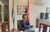 Дипломатия помогает повысить позиции Вьетнама на международной арене