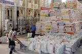 Экспорт риса на Филиппины превысил отметку в 1 млрд. долл. США