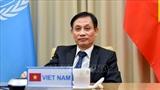 Вьетнам добился огромного дипломатического успеха в качестве члена СБ ООН