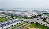 Тысячи предприятий в дельте Меконга пострадали от COVID-19