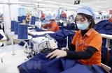 베트남 가정 가치 확립에 대한 여성 근로자 역할 발휘