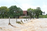 베트남 적십자회 꽝빈성 폭우 피해 주민 긴급 지원